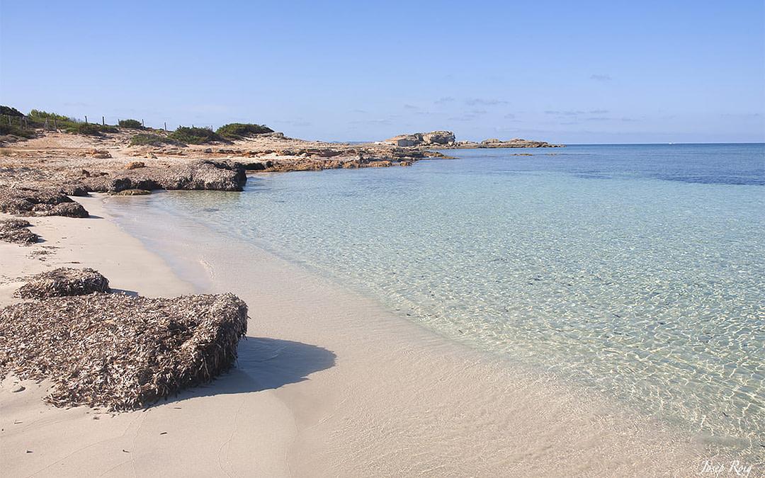 Es Cargol, playas de la colonia de sant jordi