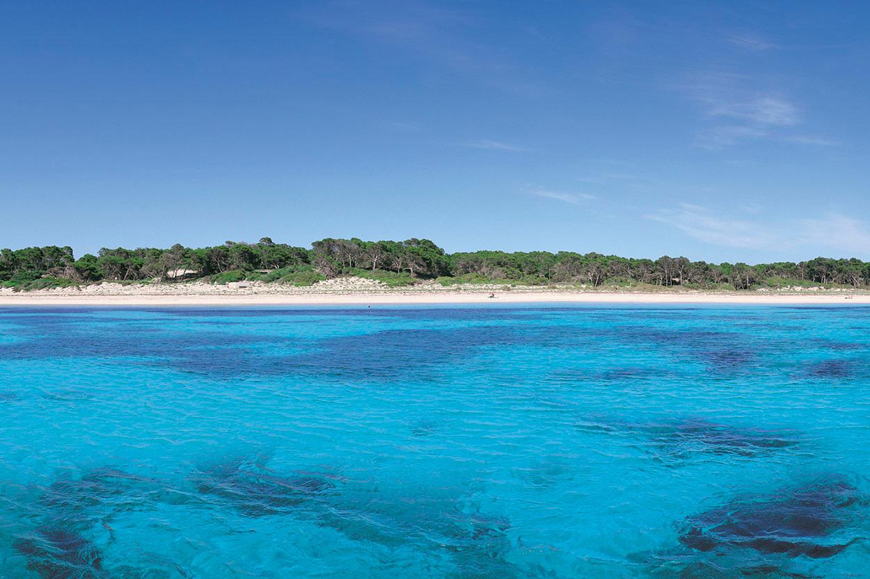 Playa en Ses Salines